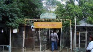 Preocupación por el futuro del refugio faunístico Luan
