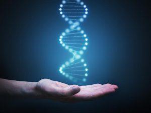 ADN argentino