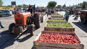 Facundo López Raggi, ministro de Producción: «La agricultura familiar nos interesa»