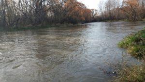 El río Neuquén se verá turbio por un mes