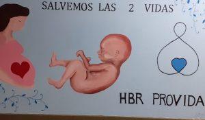 Polémica por mural anti derechos en un hospital de Neuquén