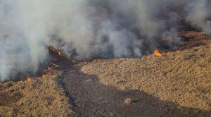 «Los incendios no paran y se están multiplicando a lo largo del país»