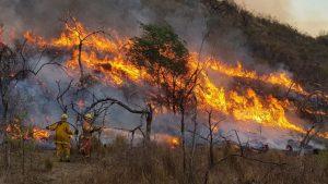 Córdoba: Incendios «intencionales» y sus «intereses»