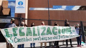 Presentan una ordenanza para la regularización y cultivo de cannabis en la ciudad