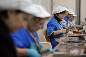 Creanel Observatorio de Derechos de la Mujer Trabajadora «Milagro Sala»