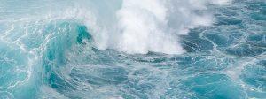 Los océanos, los grandes olvidados