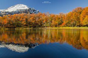 El Consejo Federal de Turismo analiza la temporada invernal