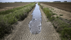 ¿Cómo afecta la sequía al sector productivo de Alto Valle?