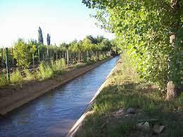 La temporada de riego en Rio Negro comenzó con cambios por la sequía